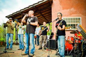 Towerpine Blues Band